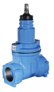 Gate Valve with Female Iron Inlet/outlet
